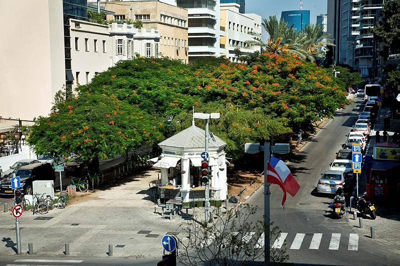 ''כולנו יודעים מה זה תל אביב, מה אופי התושבים שם''. תל אביב (צילום: משה שי, פלאש 90)