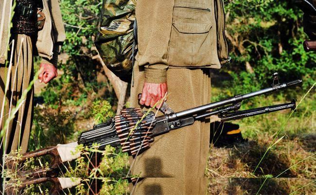כורדיות בשדה הקרב (צילום: shutterstock)