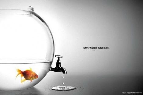 תשמרו על המים, תשמרו על החיים