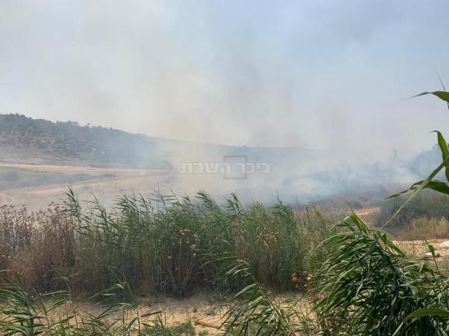 (צילום: דוברות כיבוי האש)