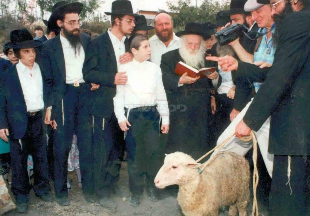 בפדיון פטר חמור לצידו, חתנו הגאון רבי דוד אפשטיין מראשי ישיבת תורה בתפארתה