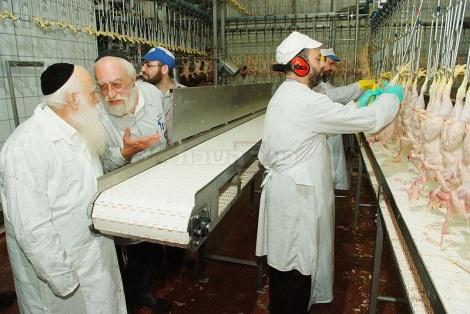 הרב אויערבאך ליד עבדת בדיקת 'צומת הגידין'