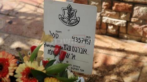 צילום: מוטי קמחי, ynet