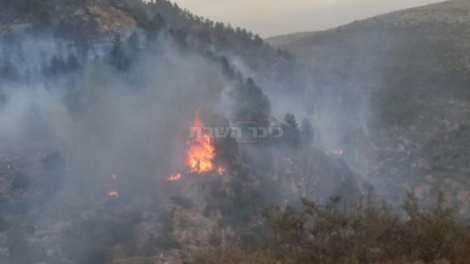 """השריפה בדולב (צילום: דוברות כב""""ה מחוז יו""""ש)"""