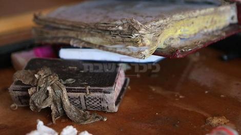 ספרי הקודש בבית הכנסת (צילום: אלכס קולומויסקי - ynet)