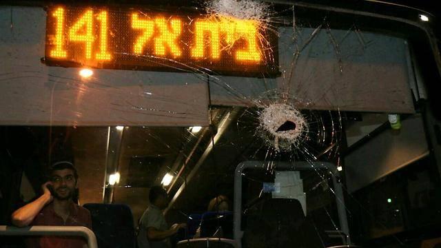 (צילומים: מתוך ynet)