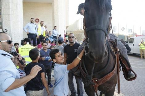 פרש משטרתי (צילום: דוברות המשטרה)