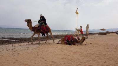 סיני, בחול המועד פסח (באדיבות המצלם)