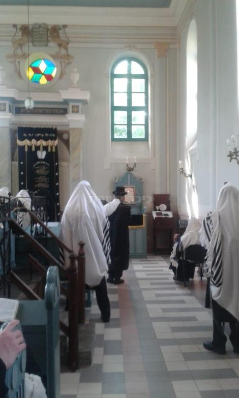 תפילת שחרית הבוקר בהונגריה