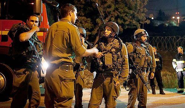(צילום וידאו: אלי מנדלבאום - ynet)