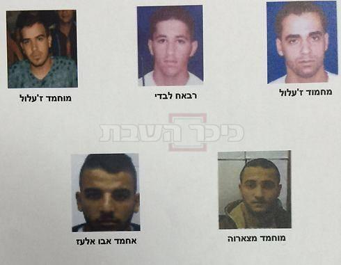 חברי החוליה שנעצרו (צילום: תקשורת שב