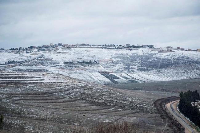 צילום: באסל עוידאת, פלאש 90