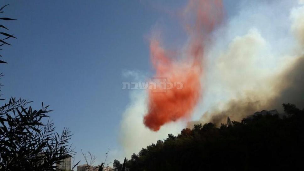 """צילום: רשת """"קבוצת העיתונאים רוטרניק"""" (צילום: כבאות והצלה מחוז חוף)"""