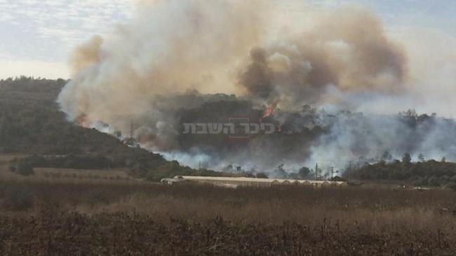 """השריפה ליד זכרון יעקב (צילום: קבוצת כב""""ה ארצי)"""