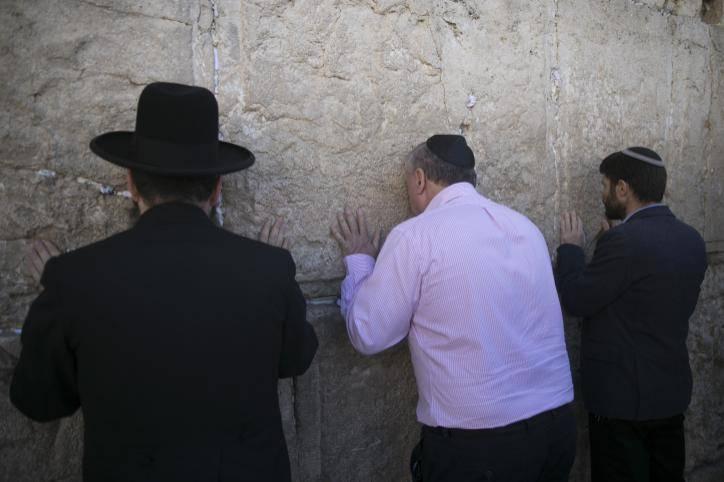 ח''כ אמסלם מתפלל בכותל, הבוקר (צילום: יונתן זינדל - פלאש 90)