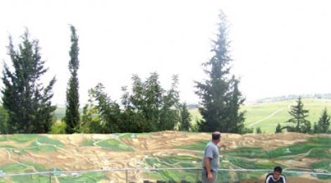 """תבנית נוף במצפה הראל שבפארק רבין. צילום: חווה בראון, קק""""ל"""