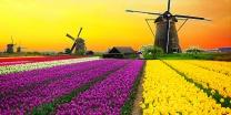 צפו בווידאו חמישה דברים שלא ידעתם על הולנד