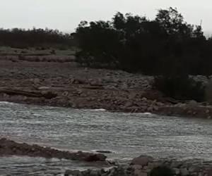 גשמי ברכה: צפו בווידאו: זרימת הגשמים בנחל צאלים