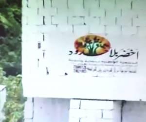 """תיעוד מפליל: כך פועל ארגון """"ירוק ללא גבולות"""" בעד הטרור. צפו"""