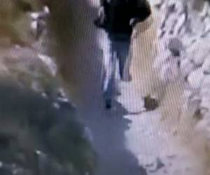 זעם בחברון: כך המחבל יידה אבן על ראש הילד היהודי • צפו