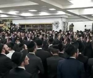 בהקפות שניות: צפו: ריקוד ה'שורות' בקהילת המתמידים