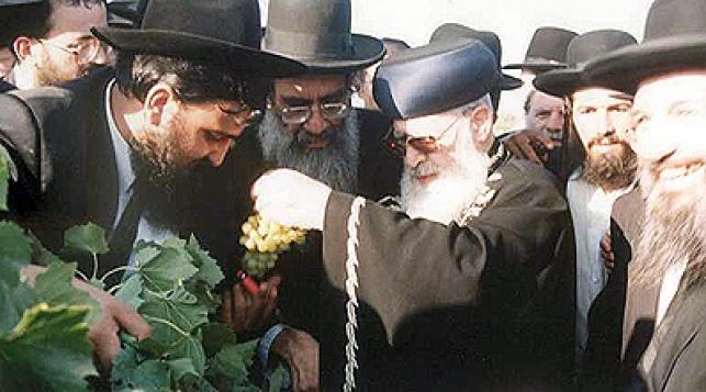 """הגר""""ע יוסף והרב בן שמעון"""