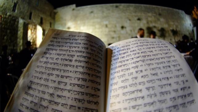 הכותל, אתמול (צילום: לויק ט', כיכר השבת)