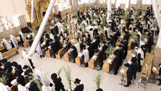 ישיבת פונוביז´, הבוקר (צילום: כיכר השבת)