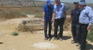 חשיפה מיוחדת בתל צפית שבחבל לכיש - אל שמורת תל צפית, עירו של גוליית