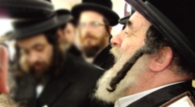 רבי ישראל הגר (צילום: כיכר השבת)