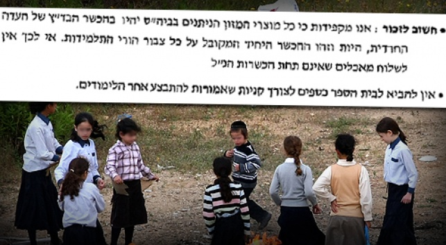 התקנון על רקע ילדי עמנואל (צילומים: כיכר השבת)