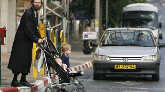 מסוכן לרדת לכביש. צילום: פלאש 90