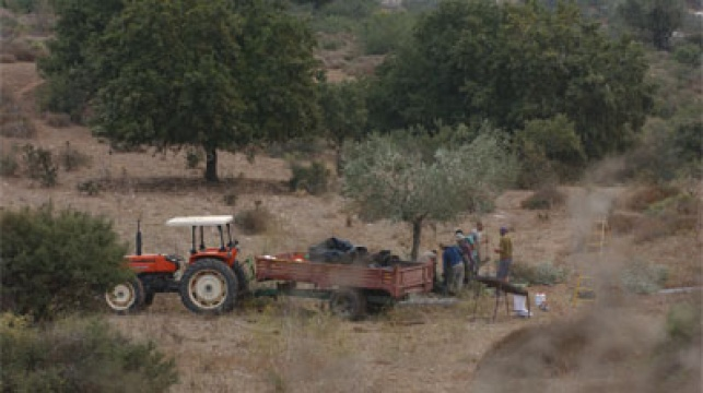 חקלאים באצבע הגליל. צילום: פלאש 90
