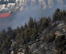 השריפה אתמול (צילום: פלאש 90)