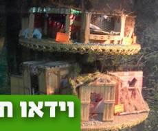 """אל תפספסו: """"סוכות הפלא"""" בירושלים"""