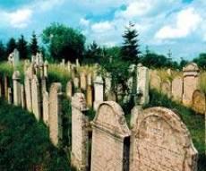 מצבות בבית הקברות היהודי בבאלסגיארמט שבהונגריה
