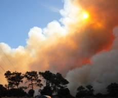 השריפה בכרמל (צילום: פלאש 90)