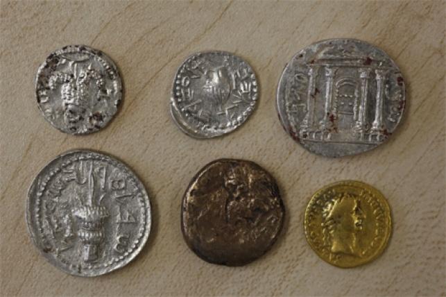 חלק מן המטבעות שנחשפו במערה ליד ביתר (צילום: ששו