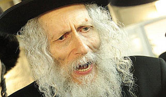 הרב אליעזר ברלנד (צילום: ויקטור מזוז)