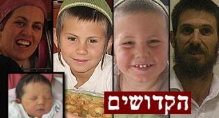 "ח""כ מיכאל בן ארי (צילום: פלאש 90)"