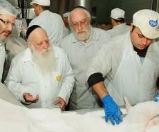"""הגרא""""ד אויערבאך עם רב המשחטה הרב סגל"""