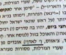 מתוך הספר (סריקה: כיכר השבת)