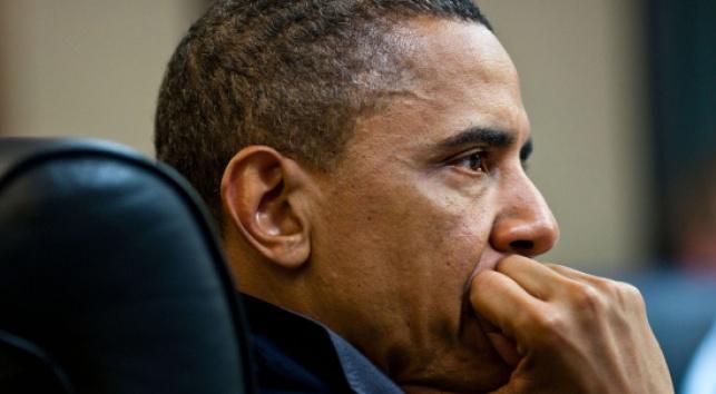 אובמה צופה בתמונה (צילום: הבית הלבן)