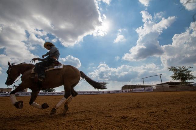 רוכב סוסים מקצועי במושב שרונה