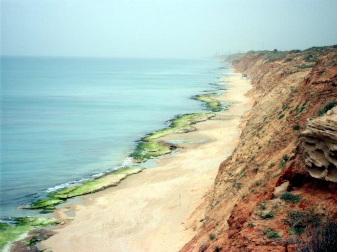 גלריה מרהיבה וצבעונית מחוף השרון • צפו