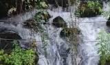 צילום: עופר שנער, רשות הטבע והגנים