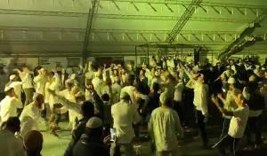 אומן: מאות רקדו יחד לצלילי טראנסים • צפו