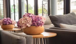 האם פרחים מפלסטיק עושים לך אלרגיה?