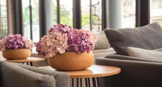 האם פרחים מפלסטיק עושים לך אלרגיה? // מיכל ולקין