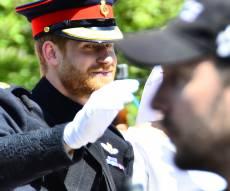 הנסיך הארי בדרך לחתונה